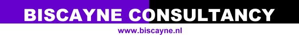 Biscayne Consultancy